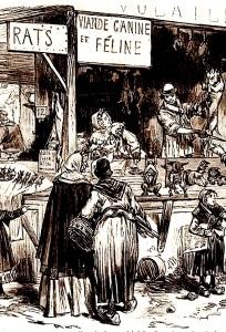 1870, boucherie canine et féline, détail