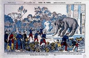1870 siège de PARIS abattage de l'éléphant au jardin des plantes